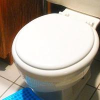 diy toilet installation in bathroom