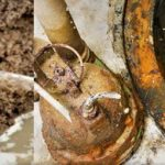 Do I Need to call a Drain Contractor or a Plumbing Contractor?