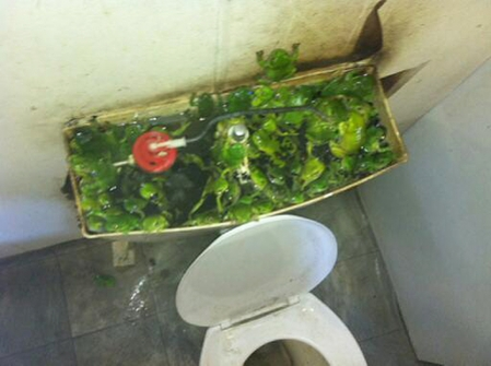 4 Bathroom Plumbing Nightmares That Really Happened