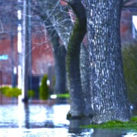 flood in the scarborough, ON area that lead the numerous flooded basements due to the lack of effective basement waterproofing