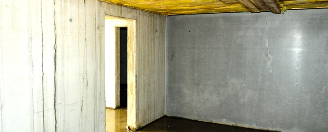 looking through the doorway inside of a wet basement located in a toronto home