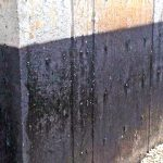 Common Basement Waterproofing Problems Scarborough Homes Face