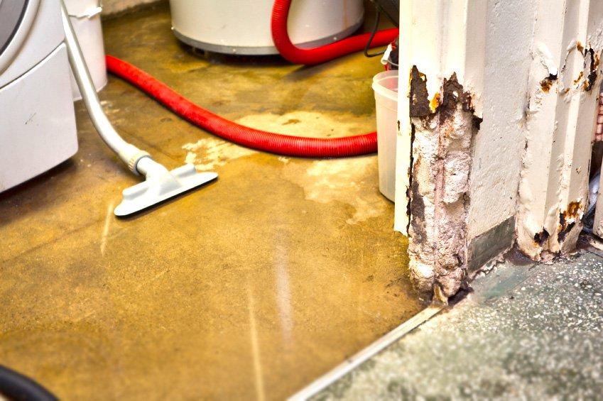 understanding toronto s basement flooding problems