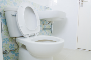 beautiful toilet installed in a new home